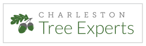 Charleston Tree Expert logo - GREEN - FINAL-01